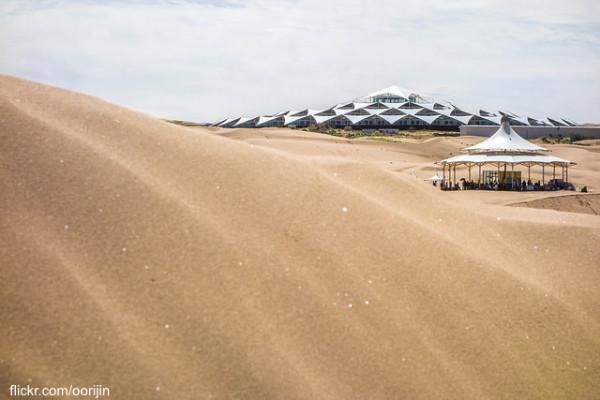 Desert Lotus Hotel